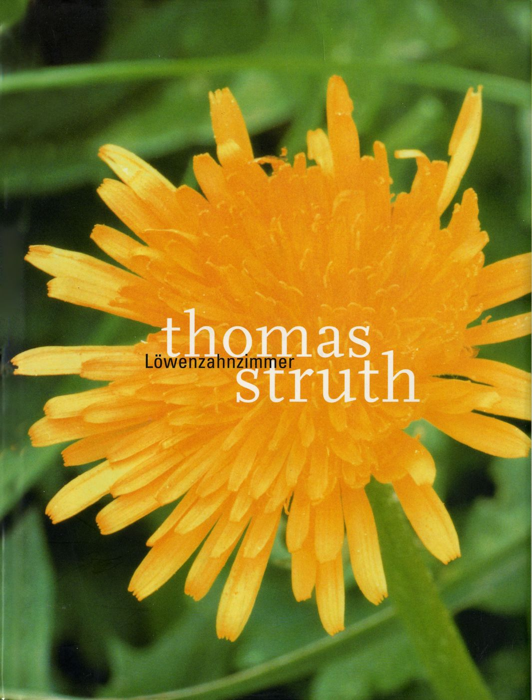 Thomas Struth: Löwenzahnzimmer (The Dandelion Room) [SIGNED]