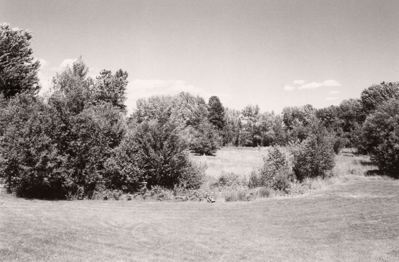 Robert Adams: Pine Valley [SIGNED]