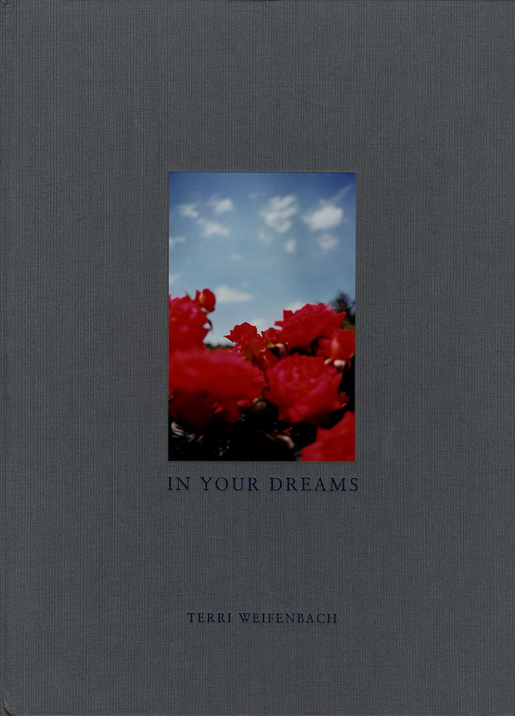Terri Weifenbach: In Your Dreams, Limited Edition (with Tipped-In Type-C Print) [SIGNED]