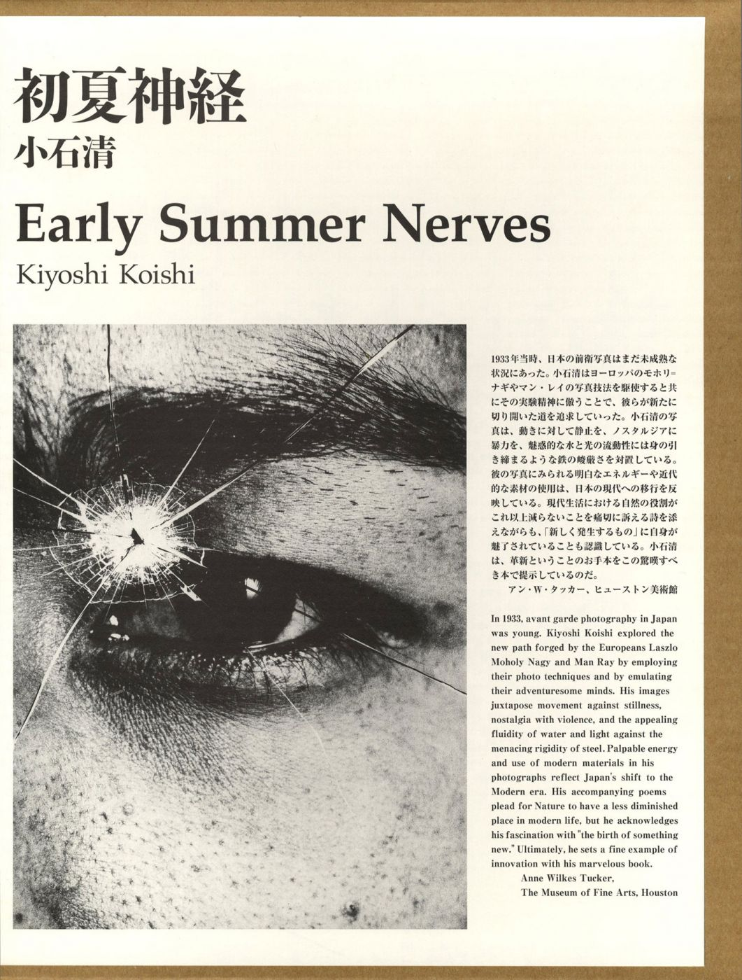 Kiyoshi Koishi: Early Summer Nerves, Limited Edition