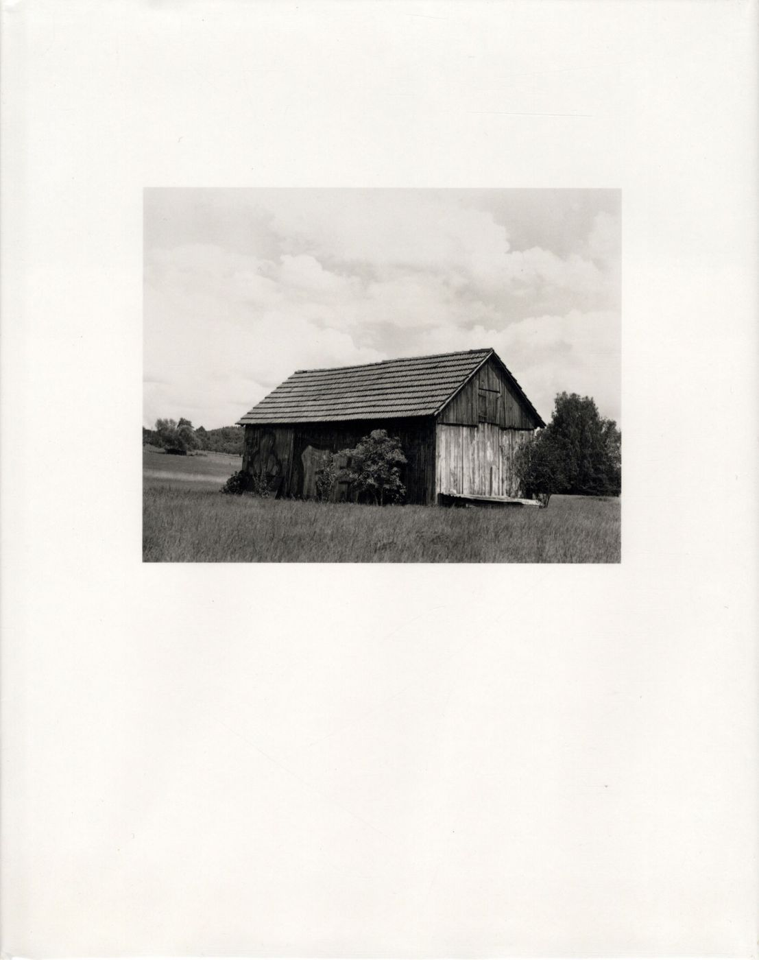 Collier Schorr: Forest and Fields, Volume 1: Neighbors/Nachbarn [SIGNED]