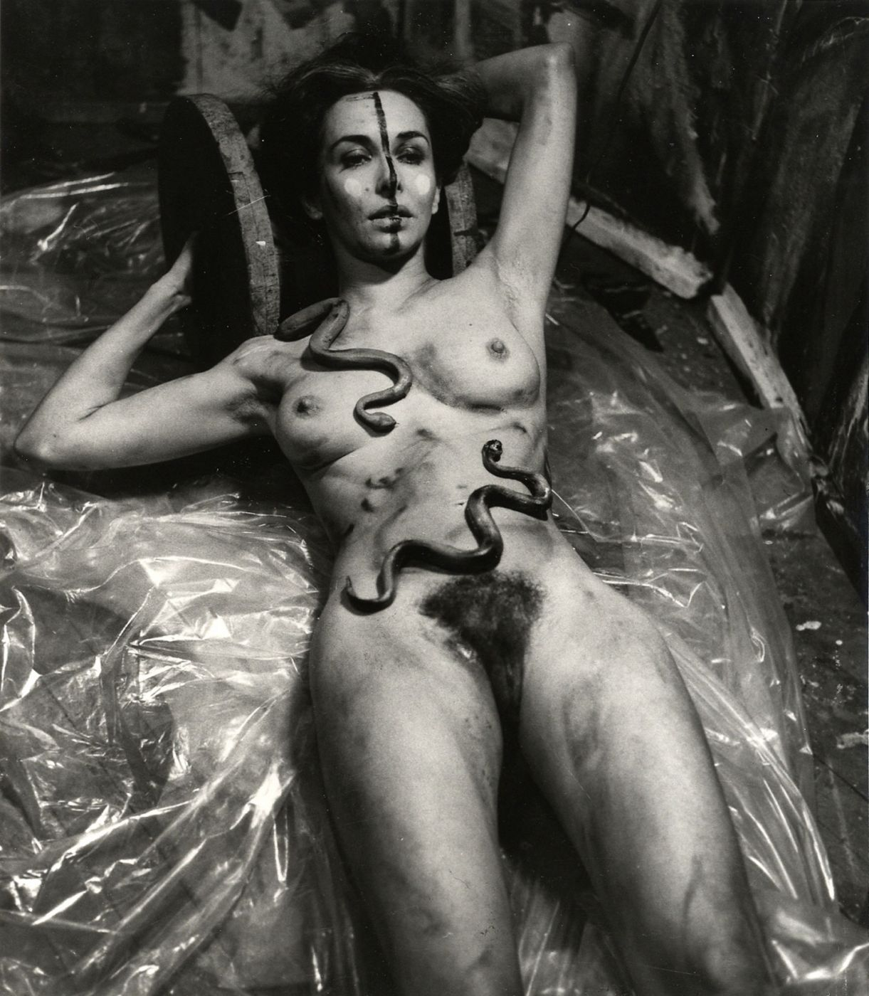 Carolee Schneemann: Imaging Her Erotics -- Essays, Interviews, Projects, Limited Edition (with 2 Prints)