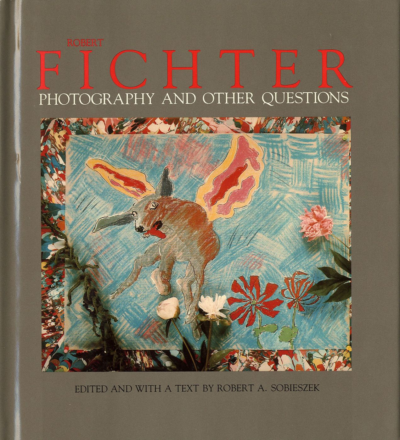 Robert Fichter: Photography and Other Questions