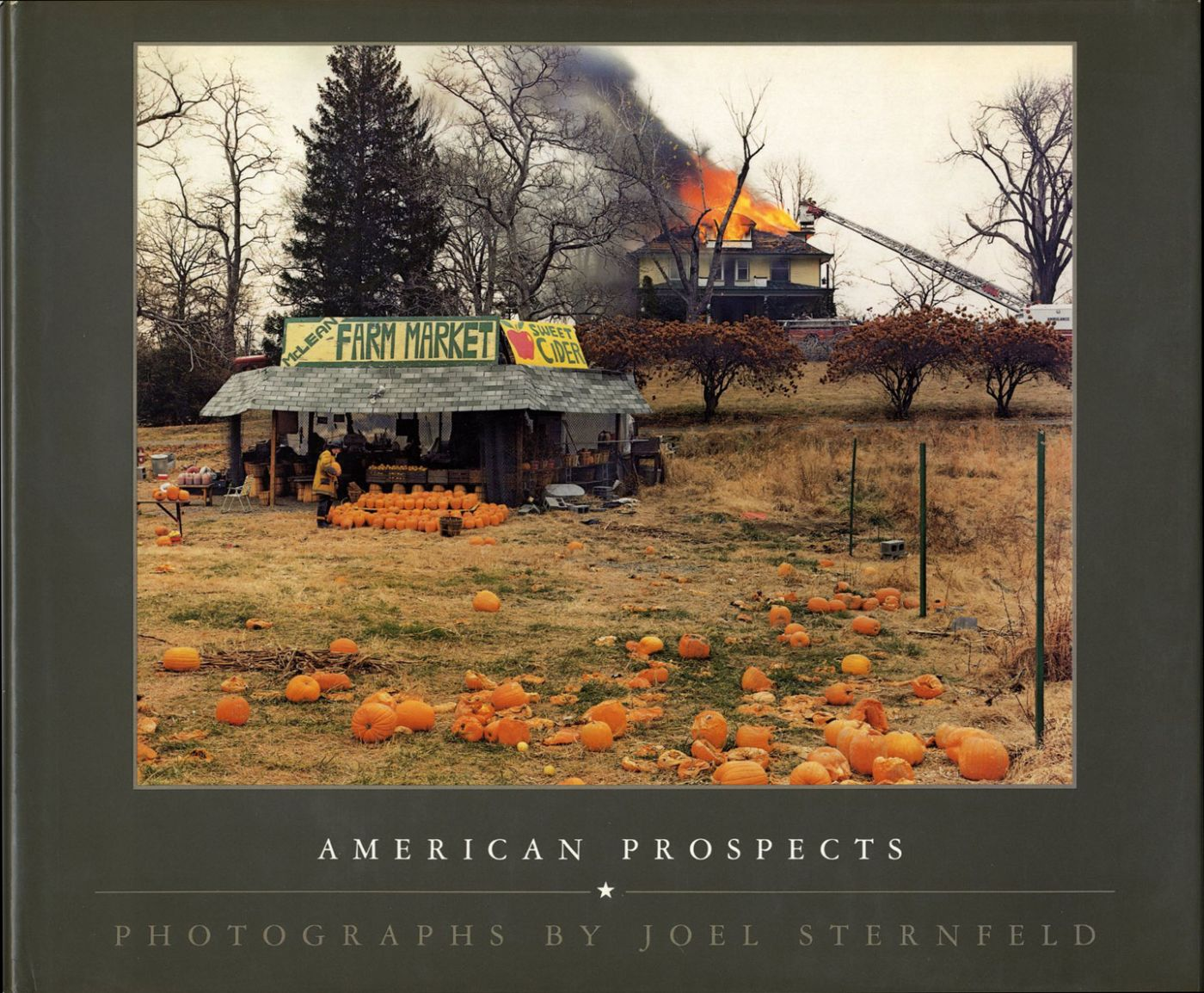 Joel Sternfeld: American Prospects (First Hardcover Edition) [SIGNED]