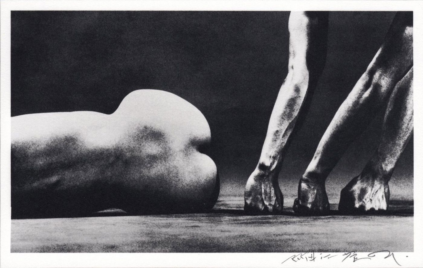 Eikoh Hosoe: Flowers of Evil, Limited Edition (21st Platinum Edition) (with 1 Freestanding and 10 Bound Platinum Prints)