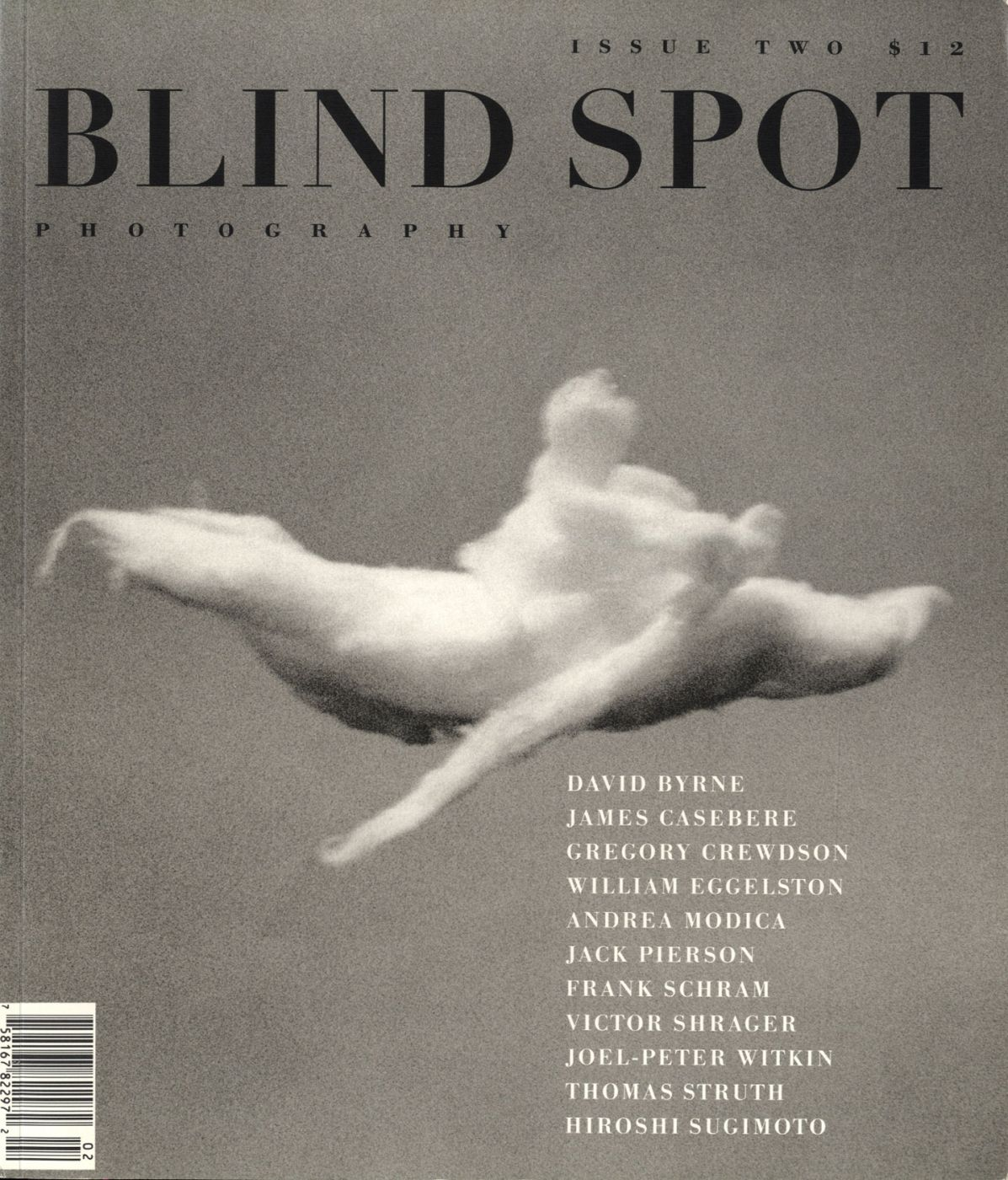 Blind Spot #2 (Photography Journal)