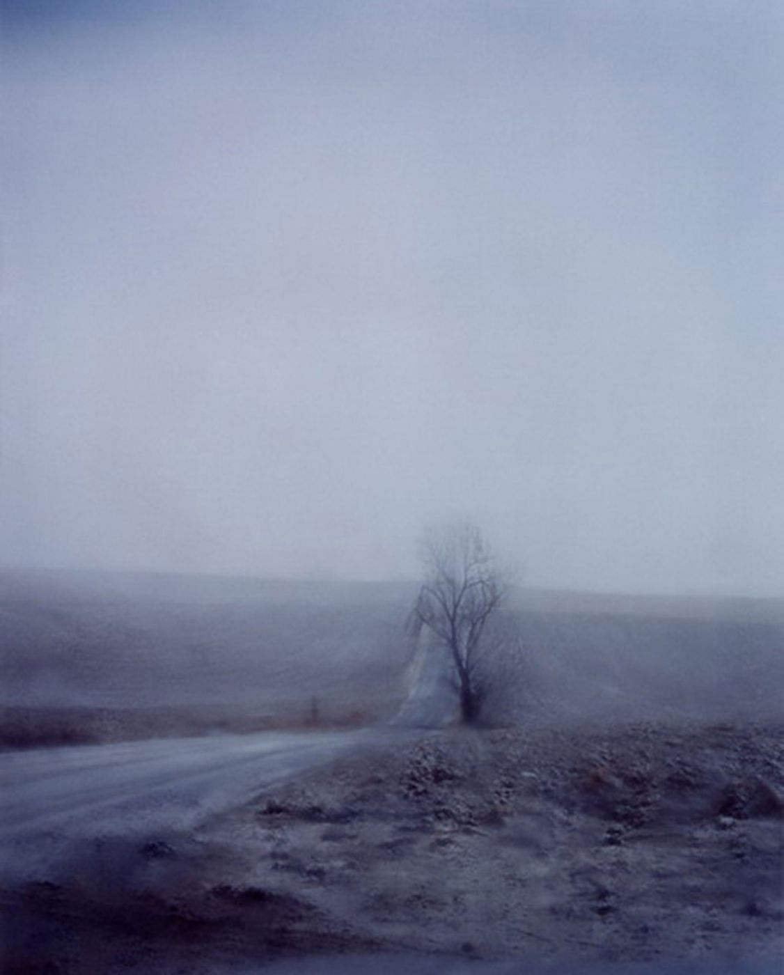 Todd Hido: A Road Divided, Limited Edition (with Type-C Print)