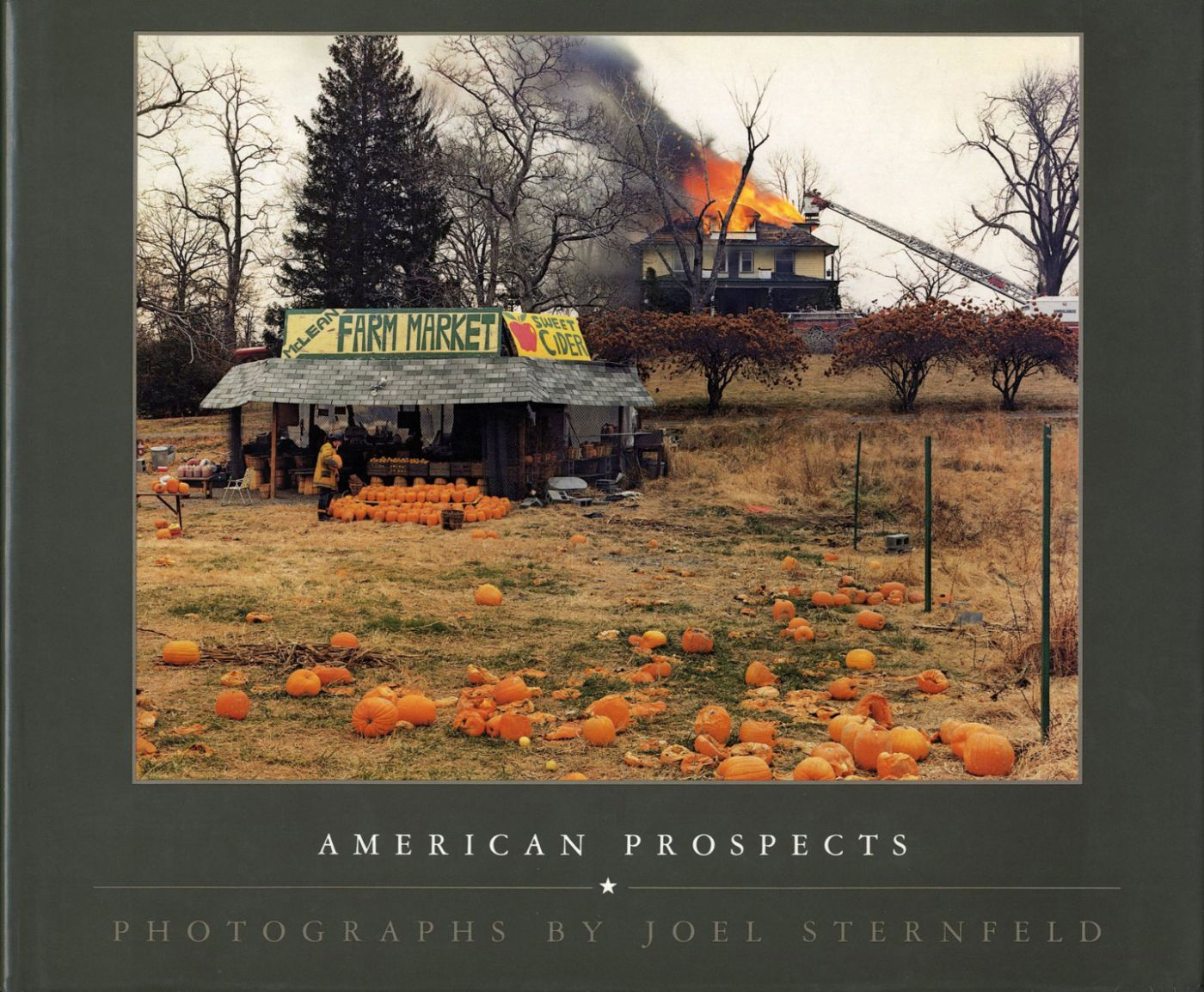 Joel Sternfeld: American Prospects (First Hardcover Edition)