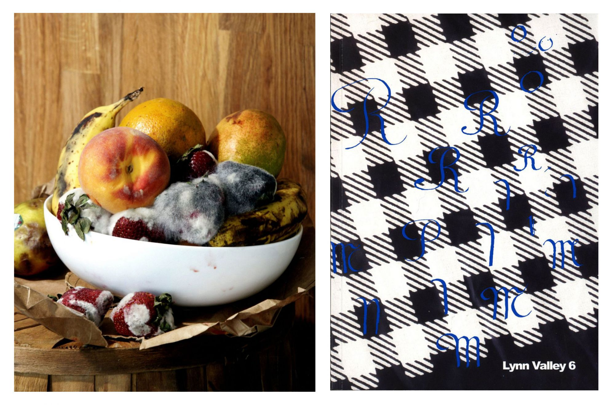"""Roe Ethridge: """"Old Fruit,"""" Limited Edition Archival Pigment Print (Includes a Copy of the Book """"Lynn Valley 6"""")"""