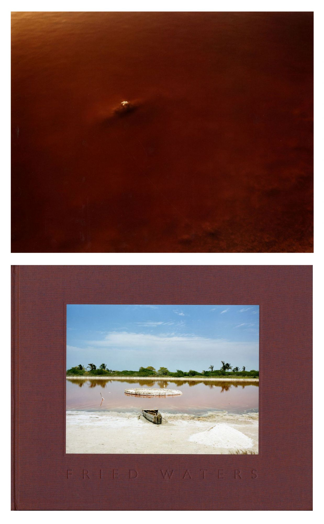 Eduardo del Valle and Mirta Gómez: Fried Waters, Deluxe Limited Edition (with Loose Type-C Print)