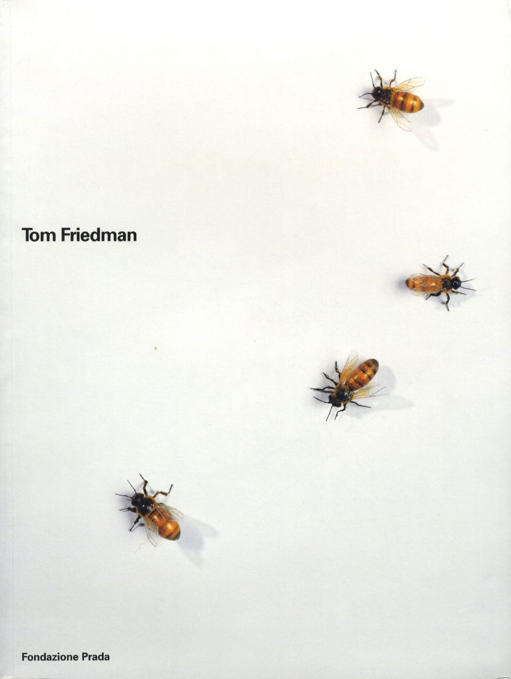 Tom Friedman (Fondazione Prada, Slipcased Two Volume Set)