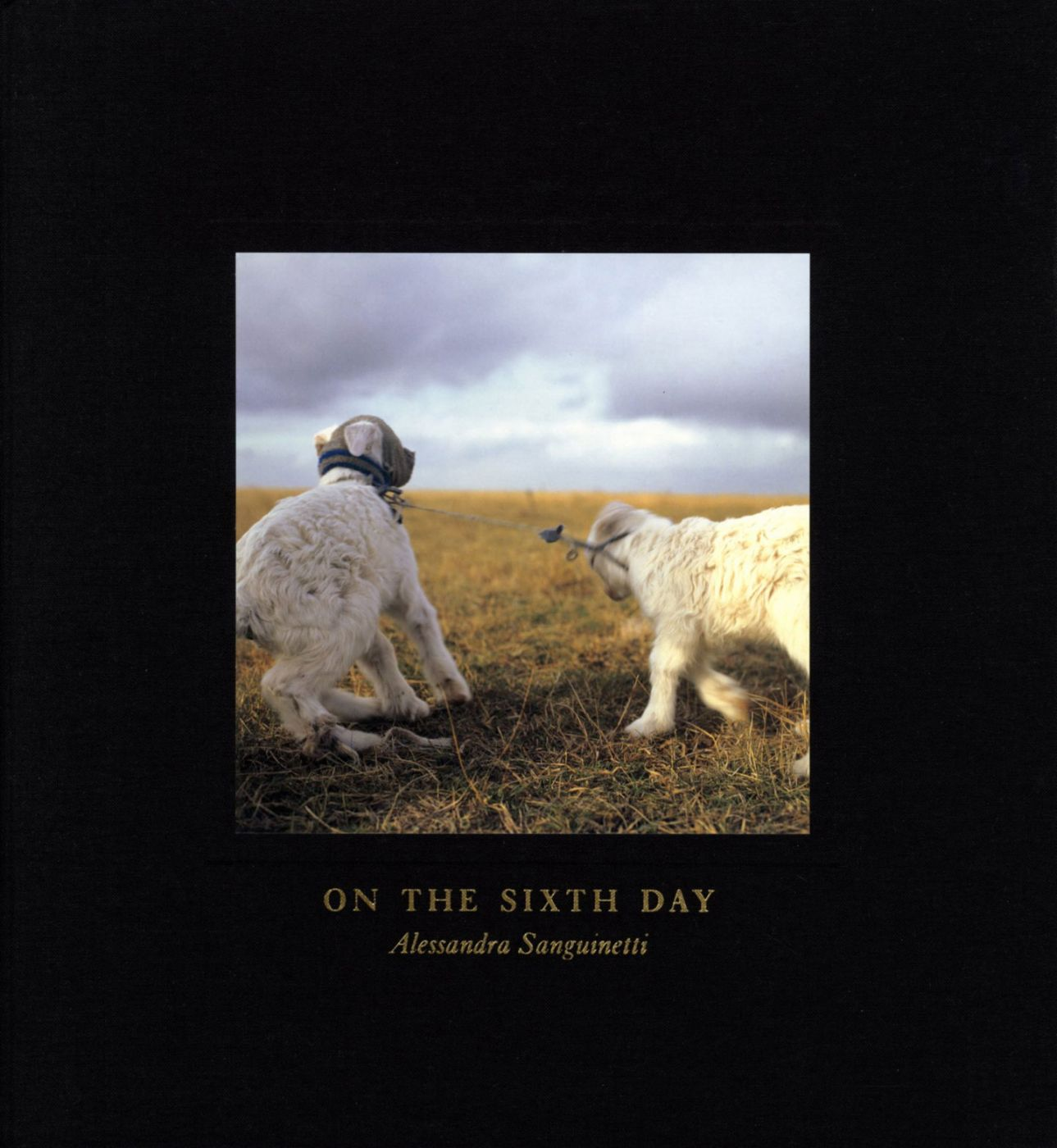 Alessandra Sanguinetti: On the Sixth Day [SIGNED]