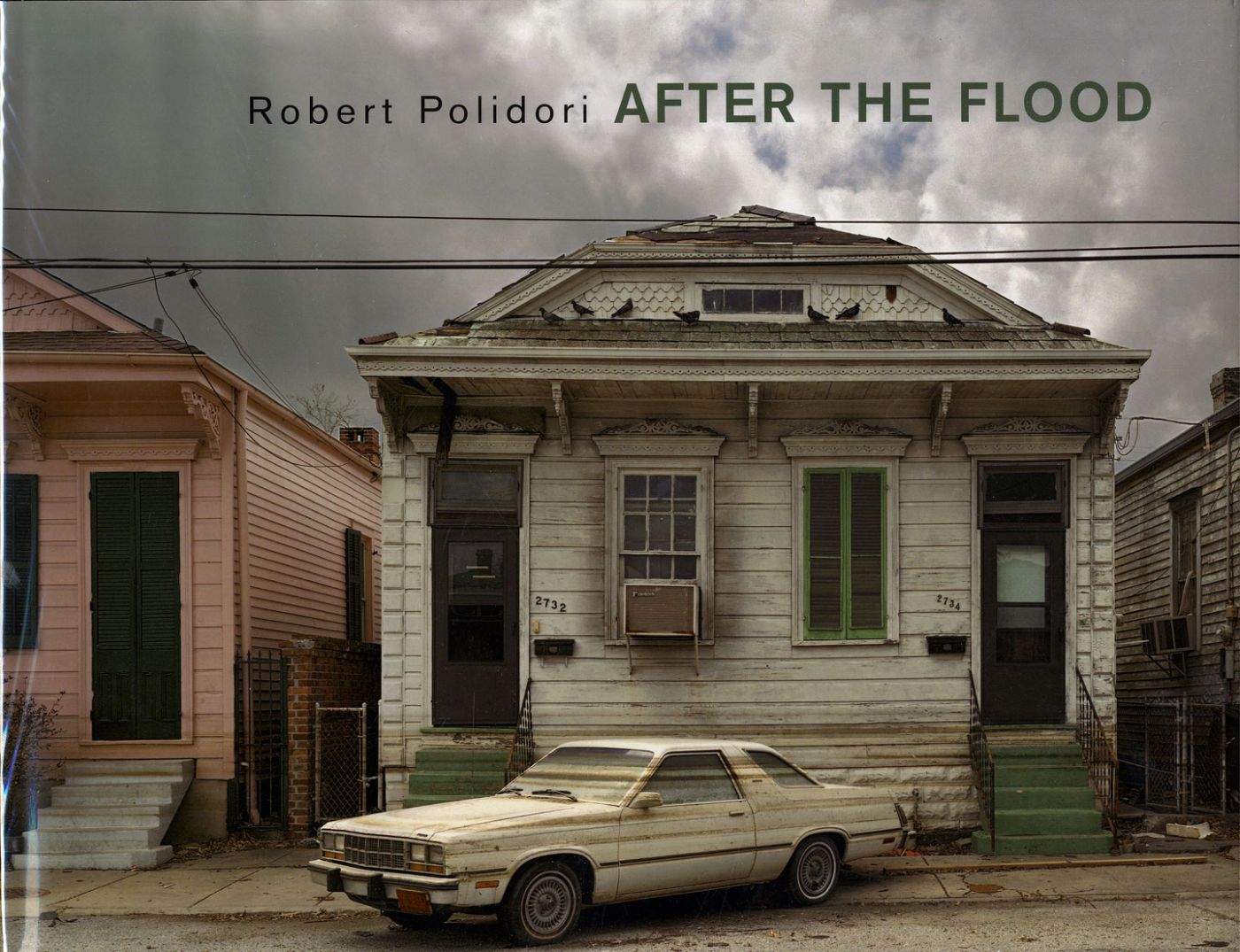 Robert Polidori: After the Flood