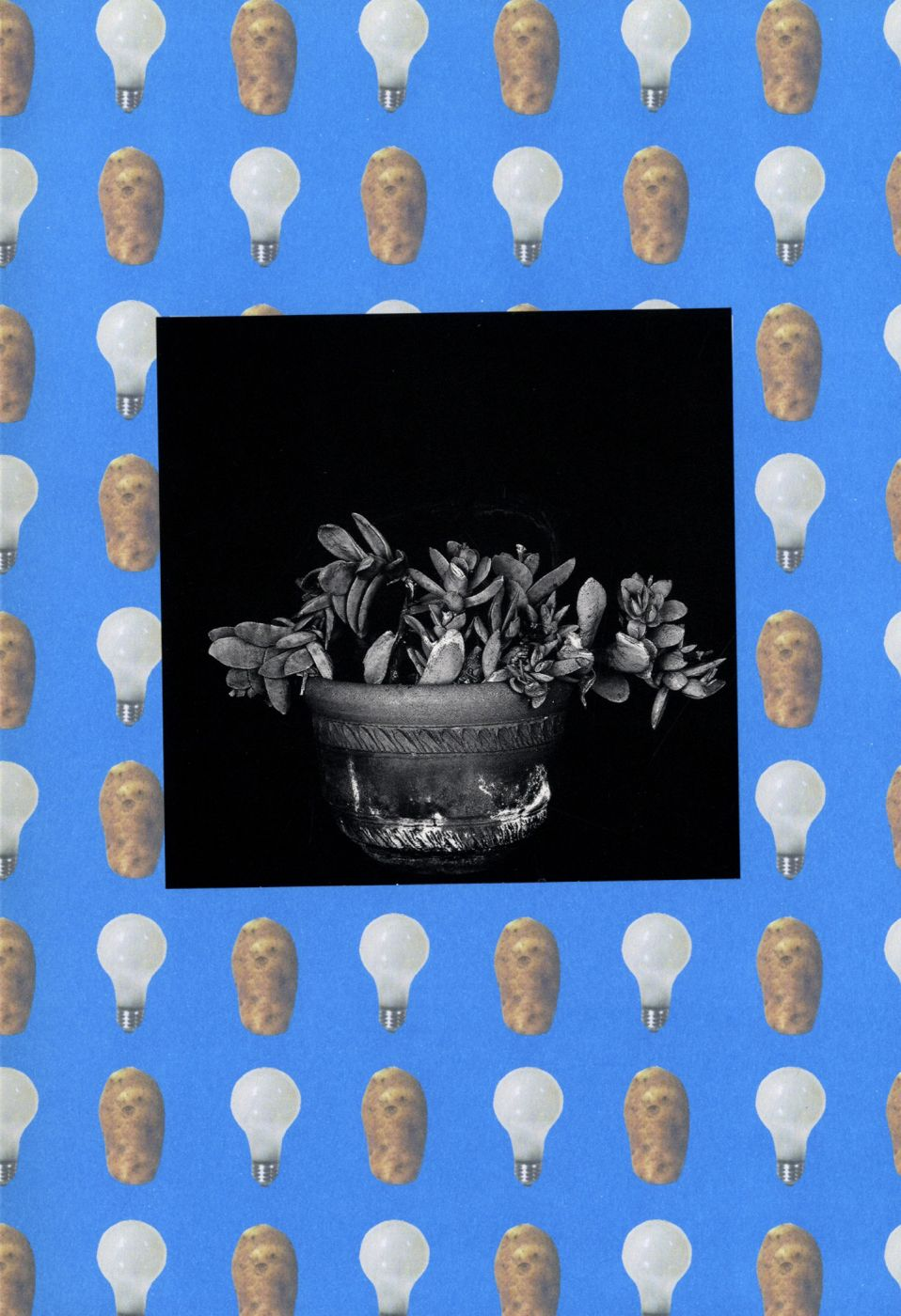 John Baldessari: RMS W VU: Wallpaper, Lamps, and Plants. (New)
