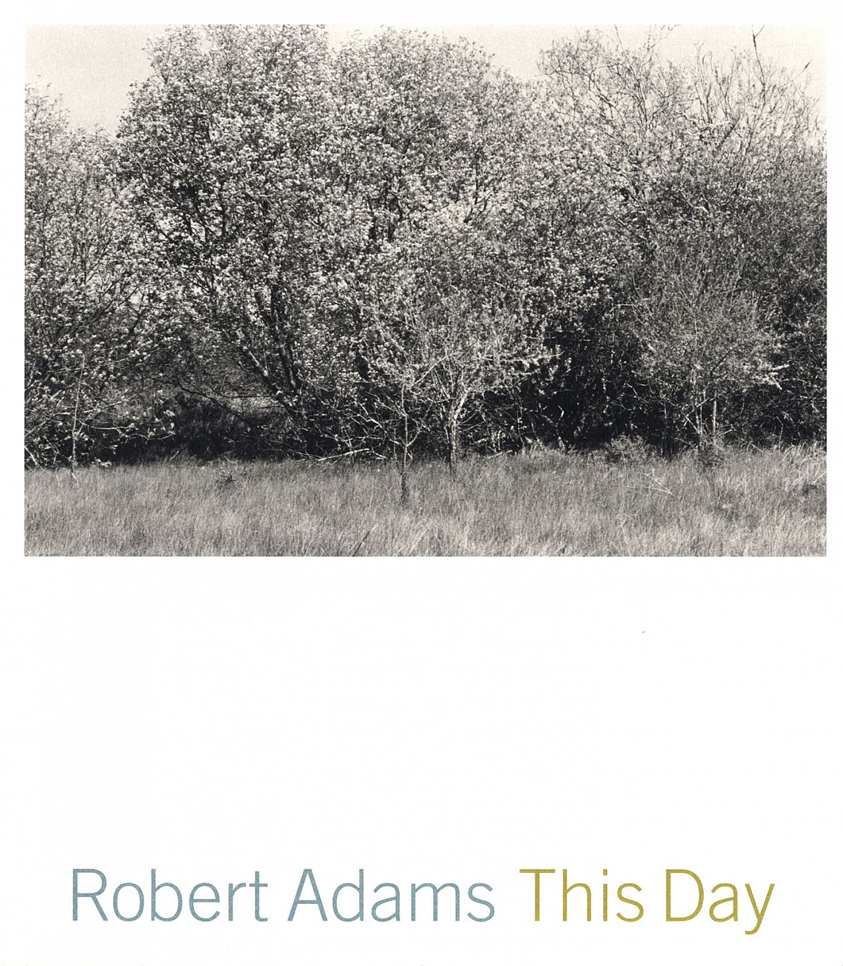 Robert Adams: This Day: Photographs from Twenty-Five Years, The Northwest Coast