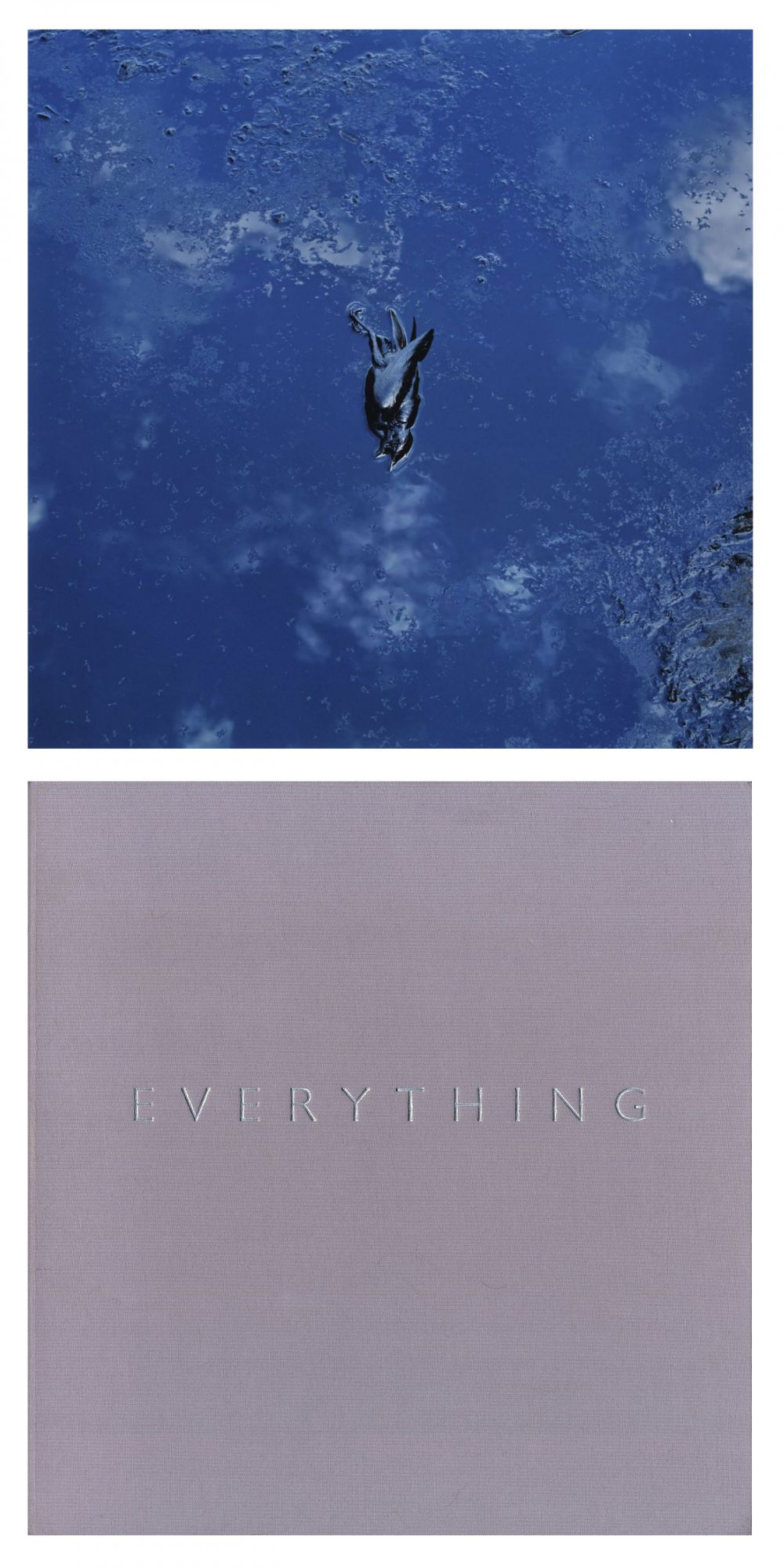 Anthony Hernandez: Everything, Limited Edition Artist's Proof (with Type-C Print)