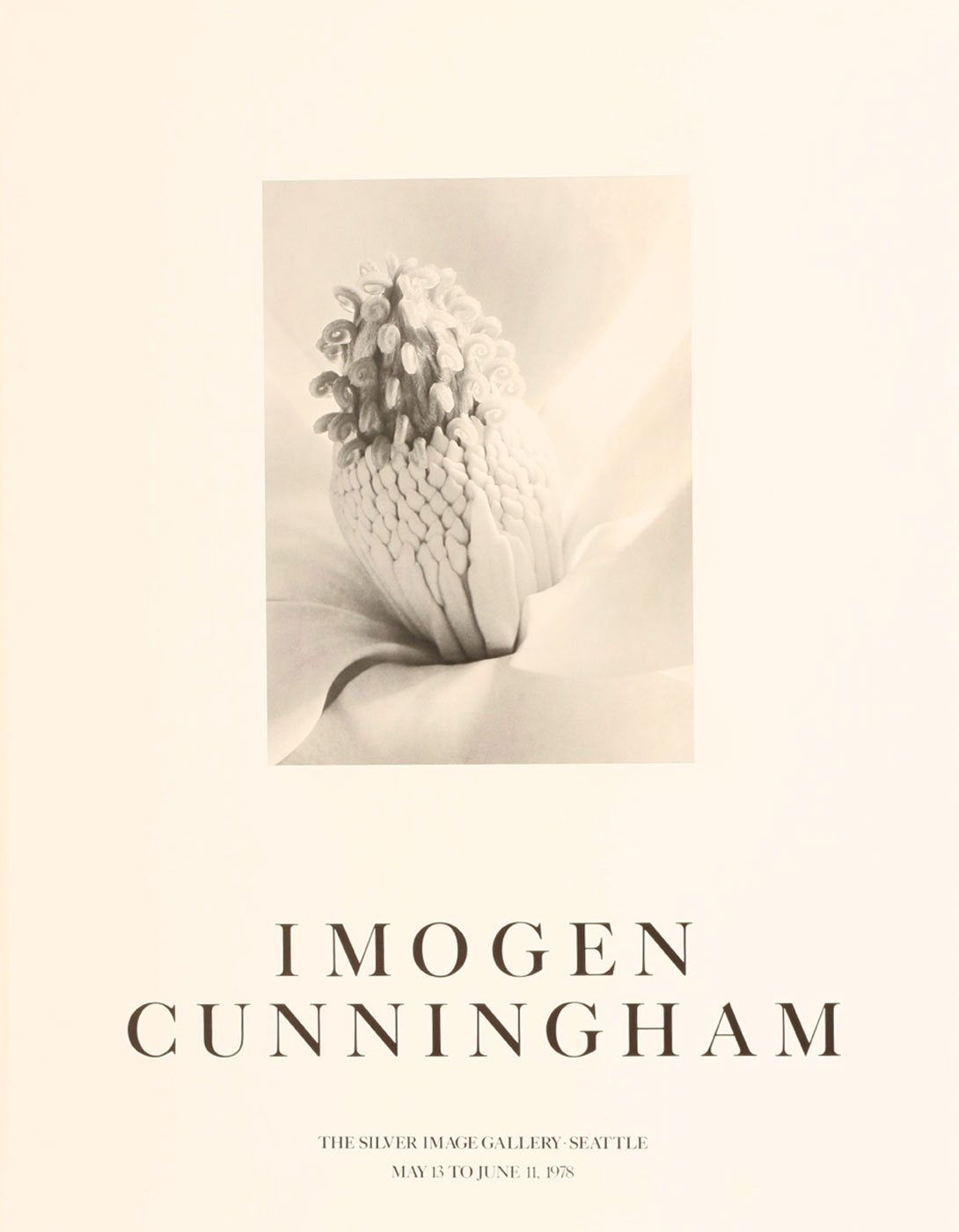 Imogen Cunningham: Silver Image Gallery Exhibition Poster (Magnolia Blossom - Tower of Jewels, 1925)