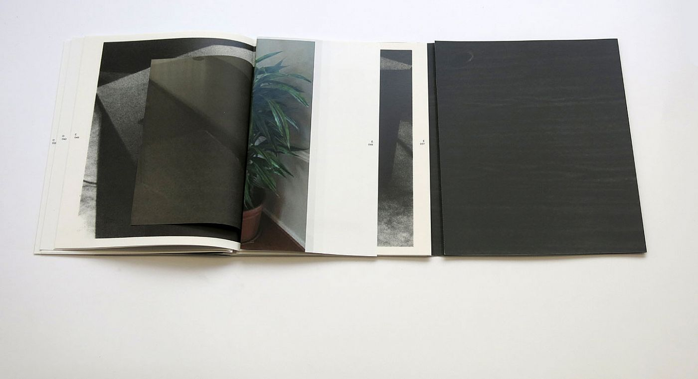 """Penelope Umbrico: Out of Order, Limited Edition (with Type-C Print Variant """"Office Plants"""") [SIGNED]"""