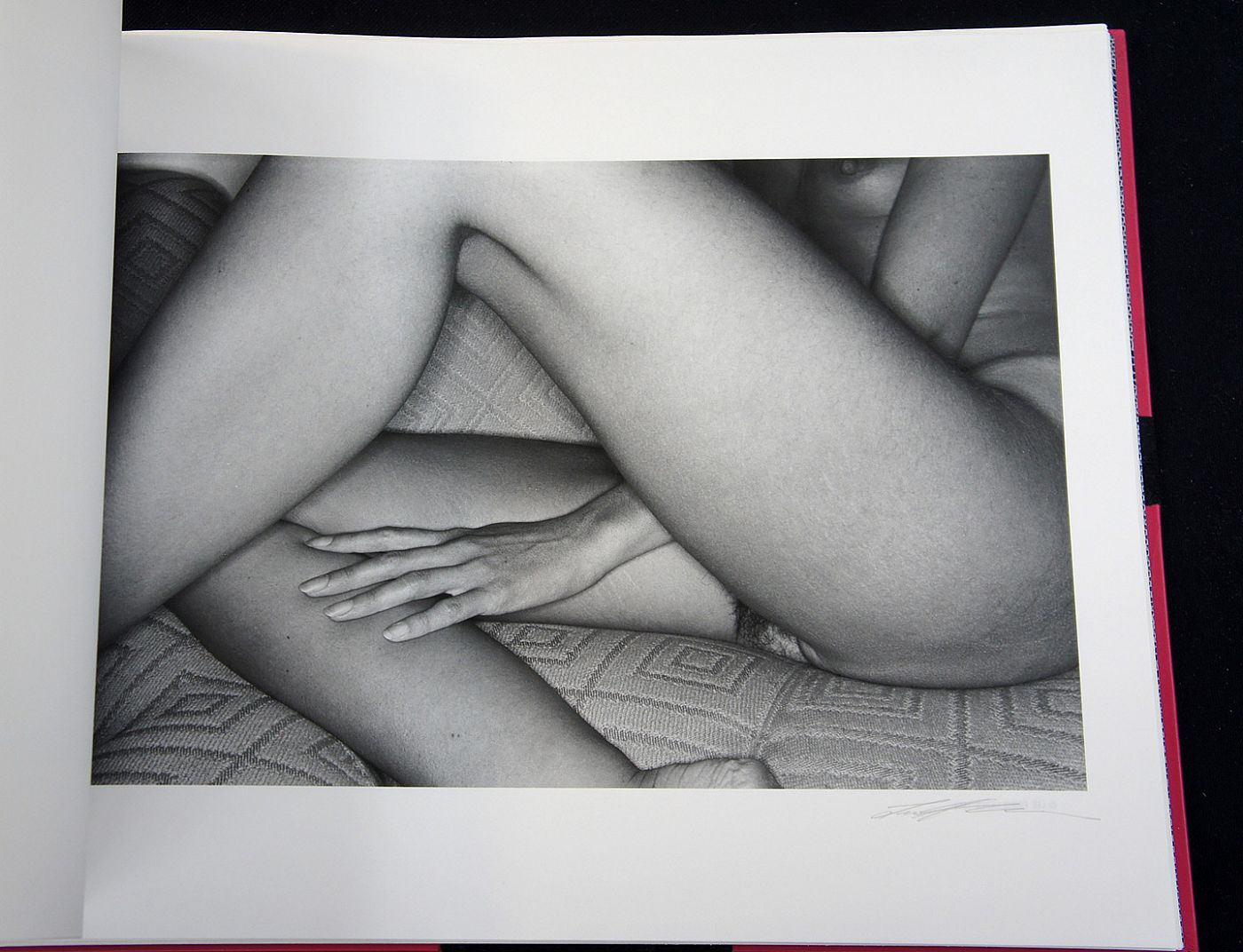 Lee Friedlander: 10 Nudes (Special Limited Edition Book of Ten Vintage Gelatin Silver Prints)