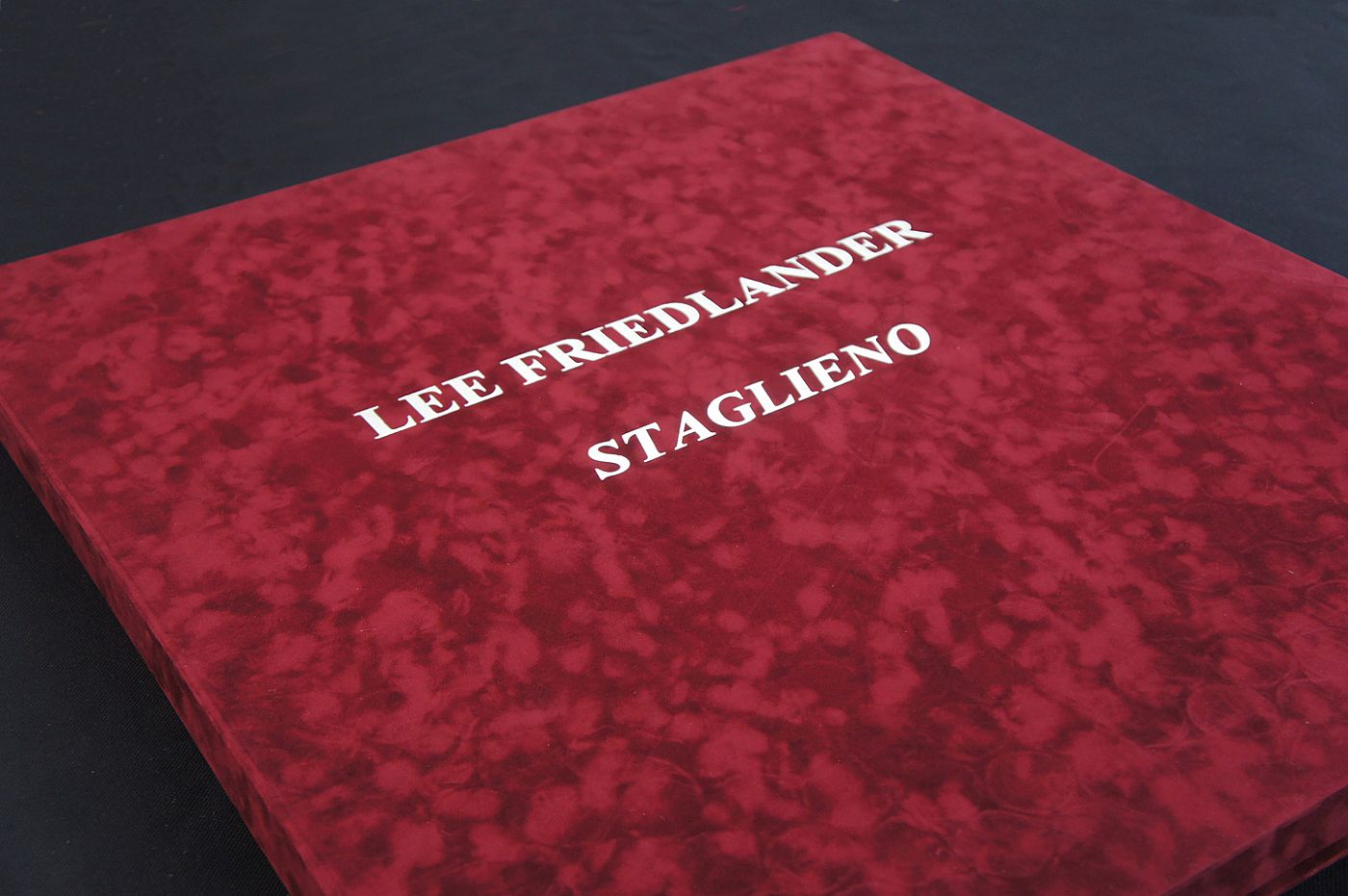 Lee Friedlander: Staglieno (Special Limited Edition Portfolio of 15 Photogravure Prints)