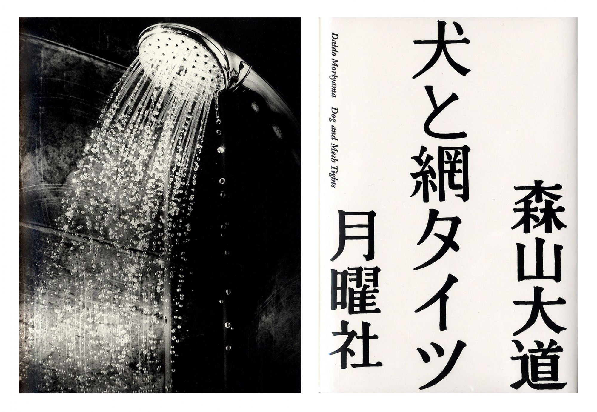 Daido Moriyama: Dog and Meshtights, Limited Edition (with Print Version A) [SIGNED]