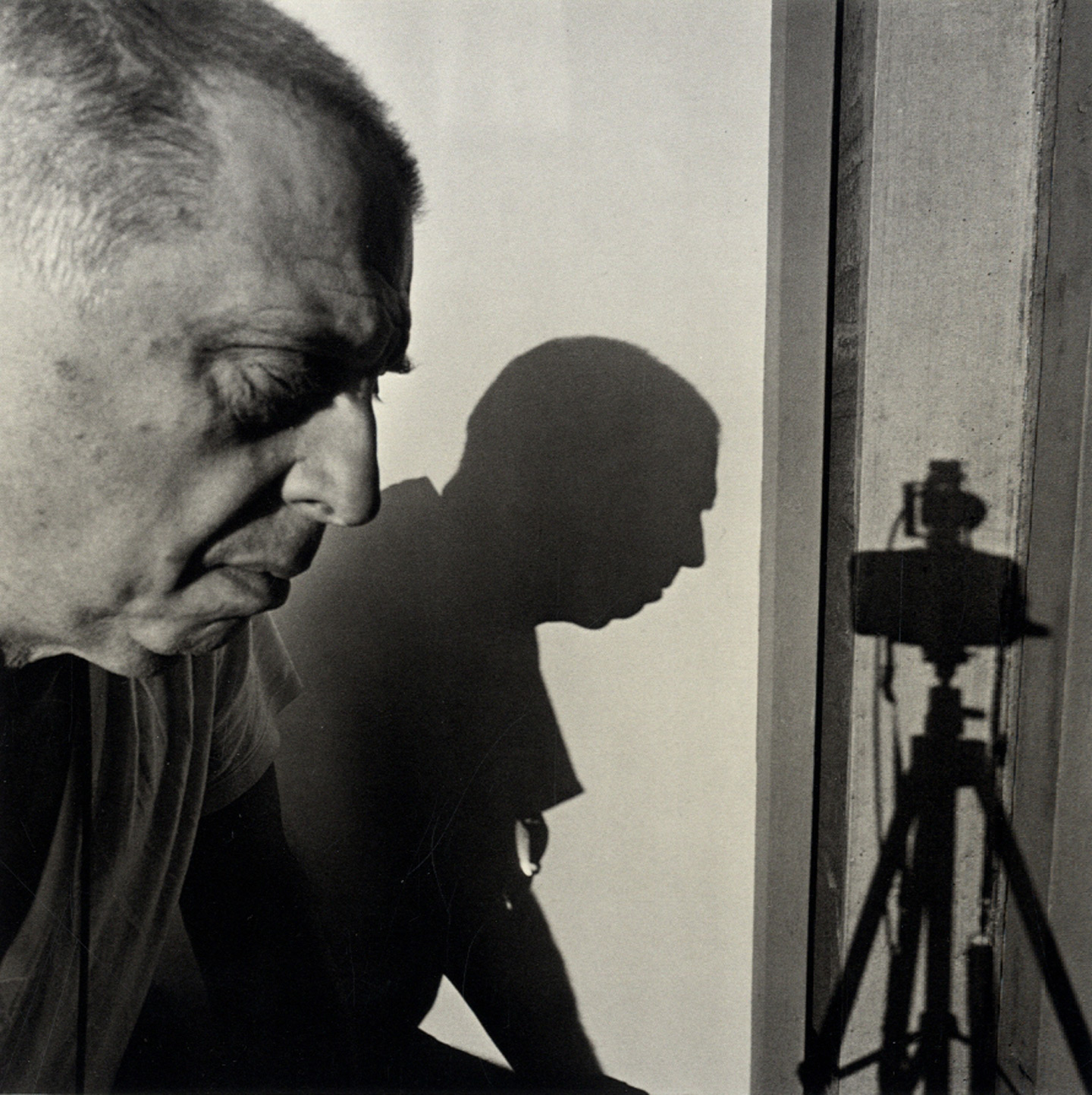 Lee Friedlander: Self-Composed (Janet Borden Gallery)