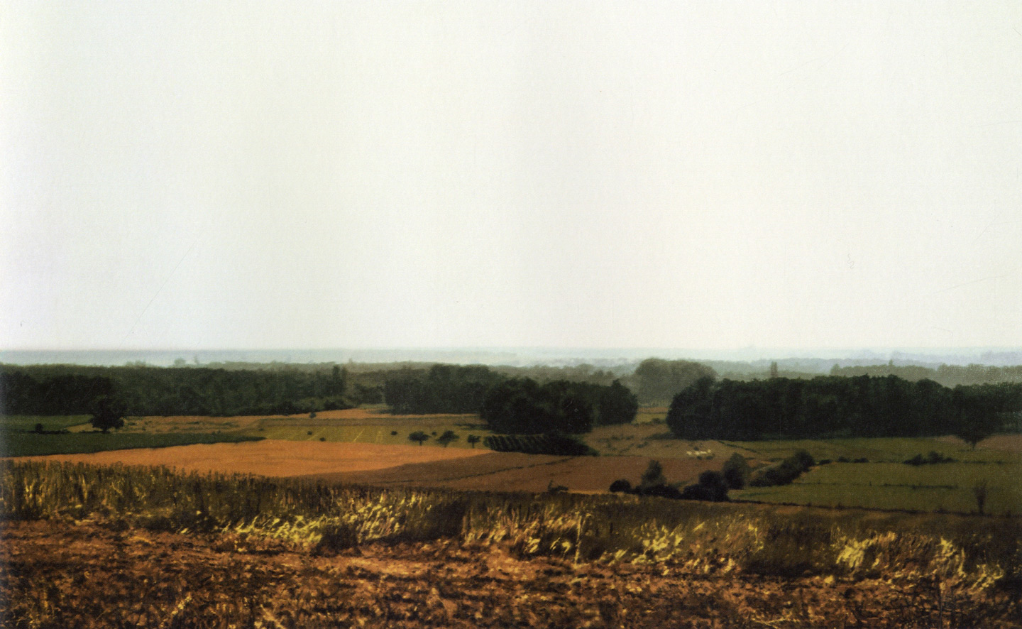 Gerhard Richter: Landscapes (Revised and Expanded Edition)