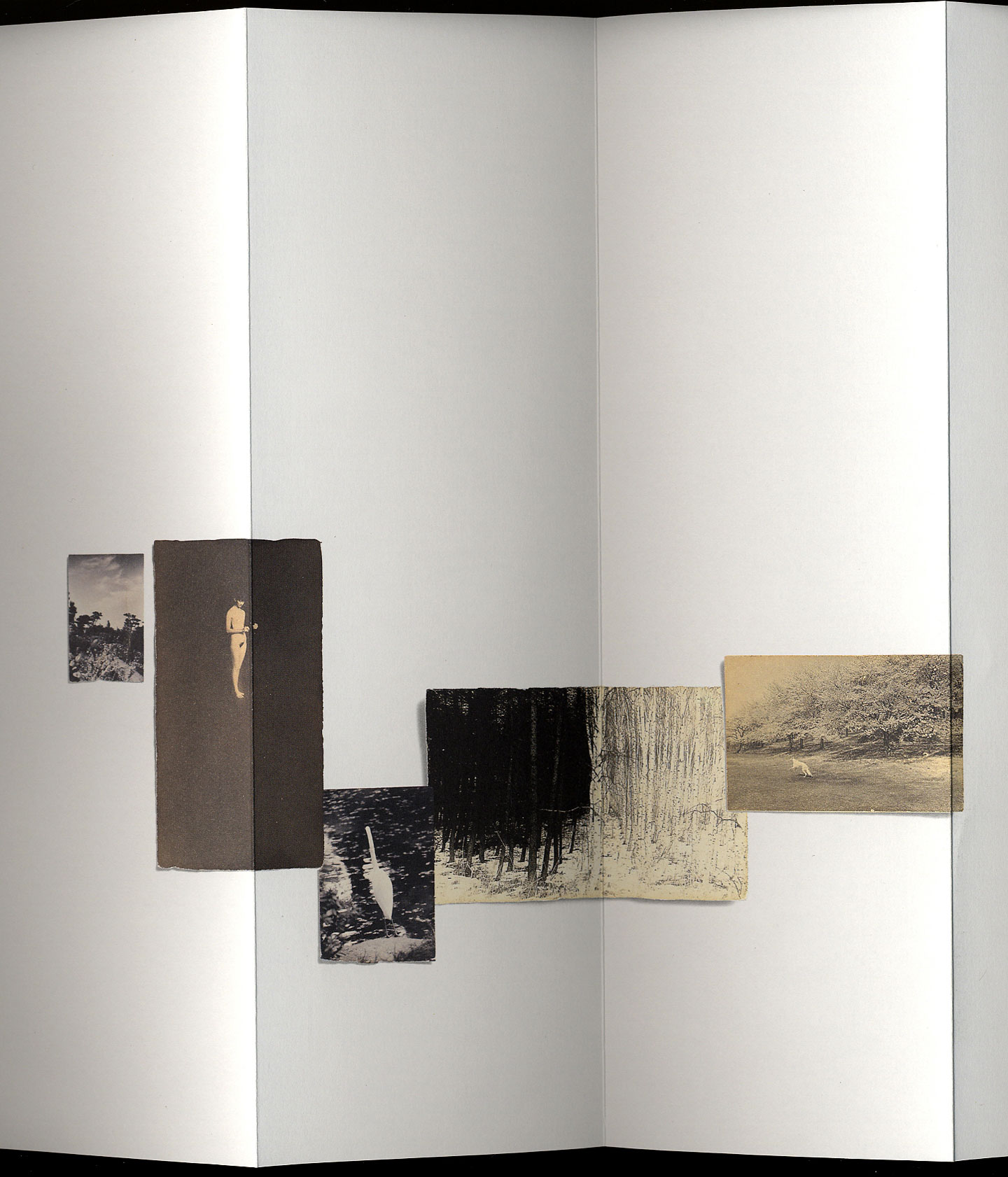 Masao Yamamoto: Ômizuao (Pillow Book), Special Limited Edition (with Print)