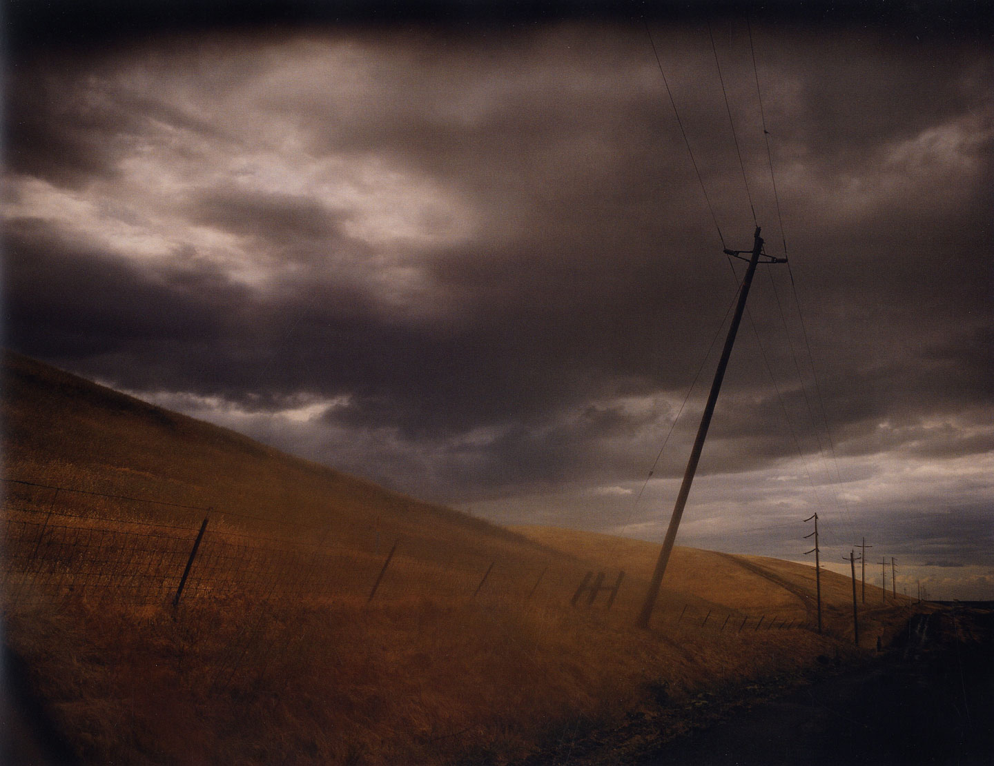 Todd Hido: Roaming [SIGNED in Year of Publication]