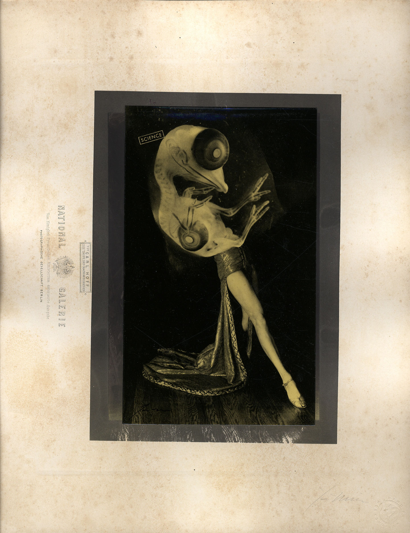 "Joseph Mills: Untitled (""Science""), Limited Edition (Varnished Print)"