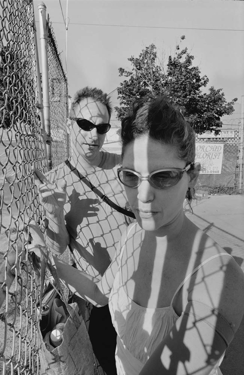 Lee Friedlander: Chain Link [SIGNED]