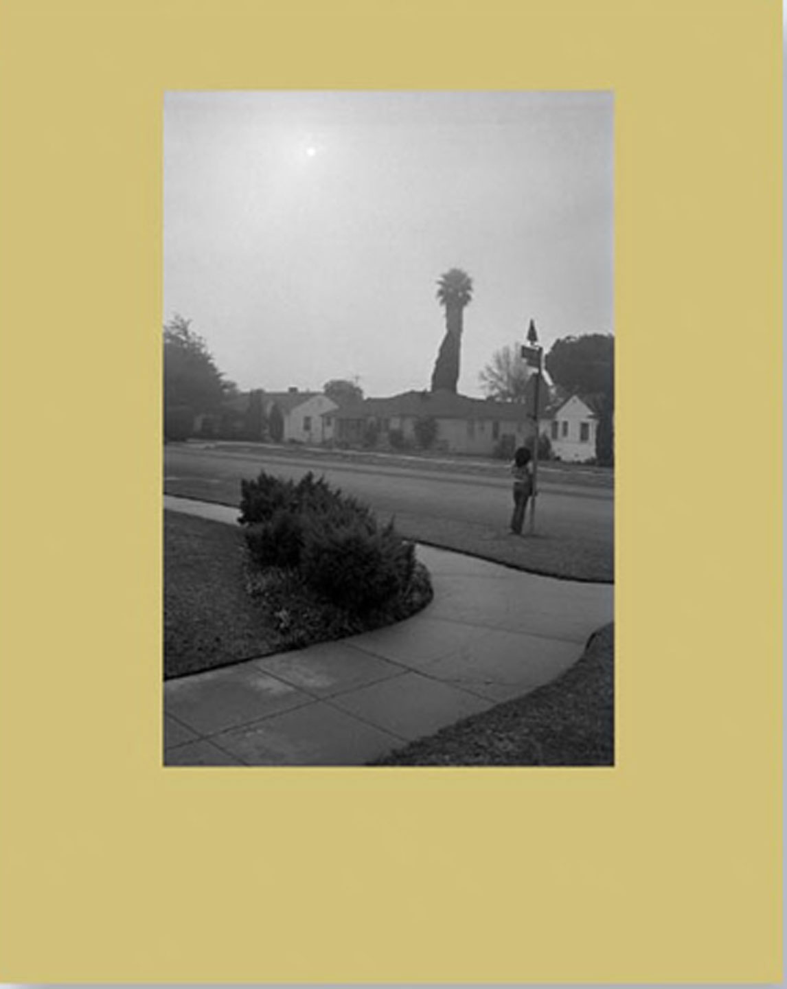 NZ Library #3: Mark Steinmetz: Angel City West: Volume Two, Limited Edition (NZ Library - Set Three) [SIGNED]