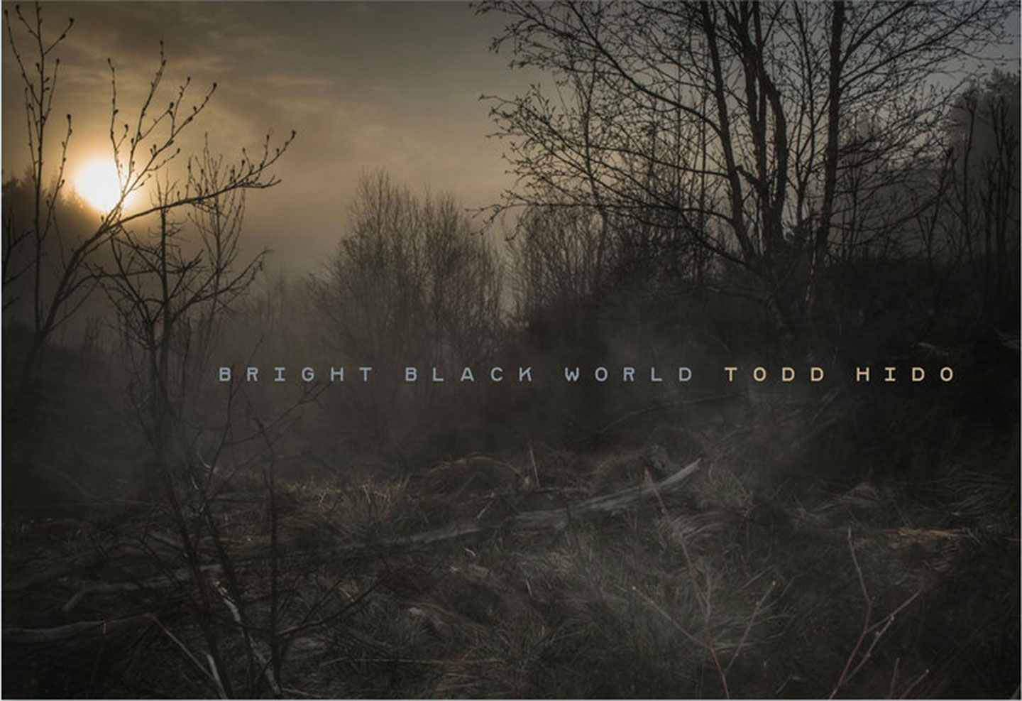Todd Hido: Bright Black World, Special Limited Edition, Artist's Proof (with AP Archival Pigment Print) [SIGNED]