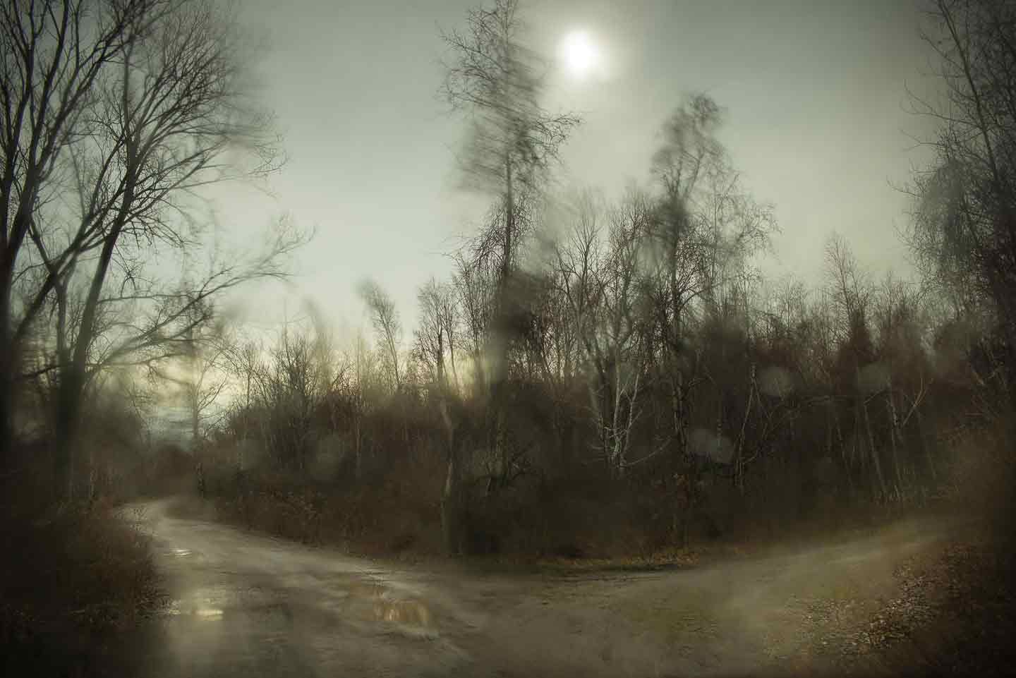 "Todd Hido: #11596-5037, 2015, ed. #2/12 (11-1/2x17-inch Original Archival Pigment Print from ""Bright Black World"" Series)"