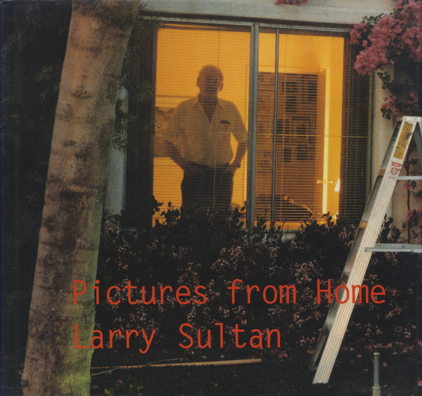 Larry Sultan: Pictures from Home