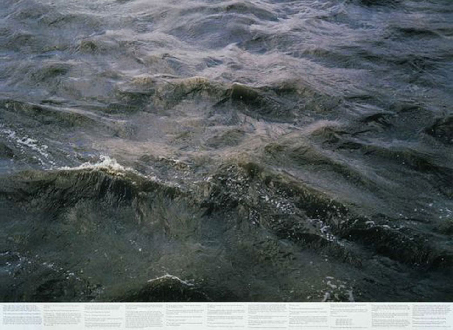 Still Water: Photographs by Roni Horn (Near Fine)