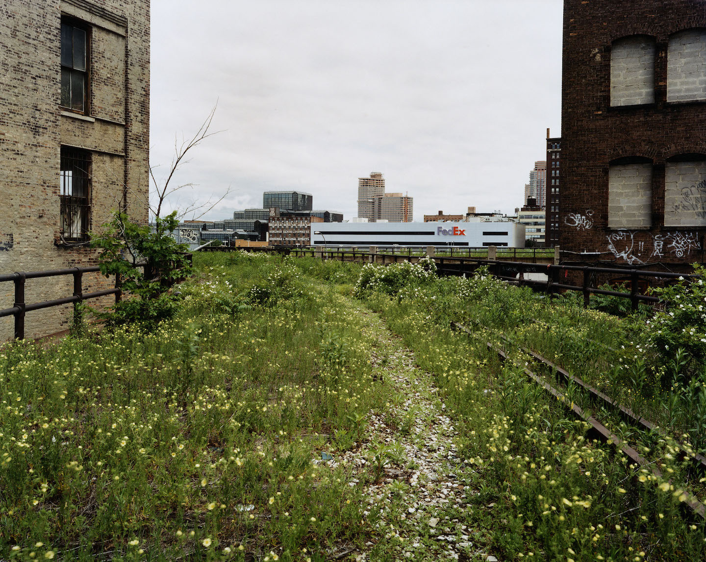 Joel Sternfeld: Walking the High Line [SIGNED]