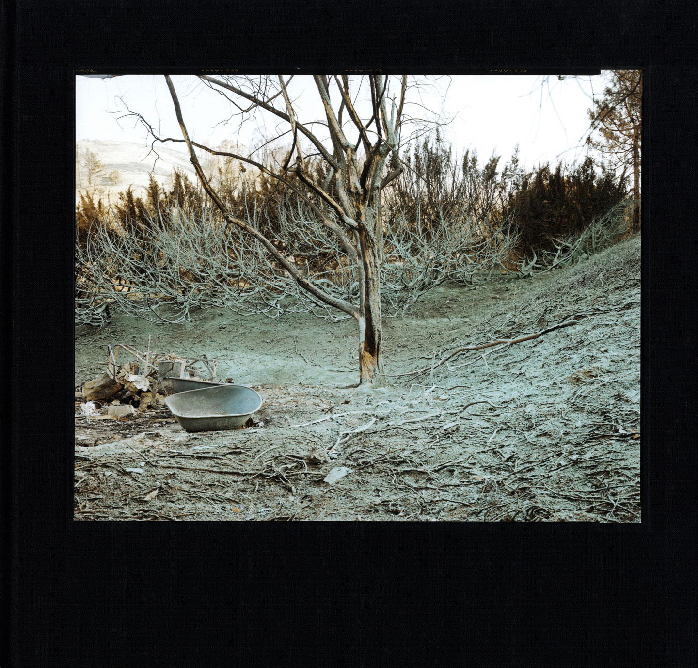 Blind Spot Series 02: Richard Misrach: 1991: The Oakland-Berkeley Fire Aftermath, Limited Edition (with Tipped-In Archival Pigment Print) [#2/100] [SIGNED]