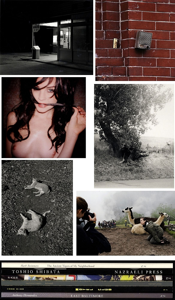Nazraeli Press Six by Six (6 x 6) Subscription Series: Set One (of Six), Limited Edition (with 6 Prints): Anthony Hernandez: East Baltimore; Todd Hido: Motel Club; Raymond Meeks: Amwell; Martin Parr: Machu Picchu; Toshio Shibata: Expressway, 1986; Mark Steinmetz: The Ancient Tigers of My Neighborhood
