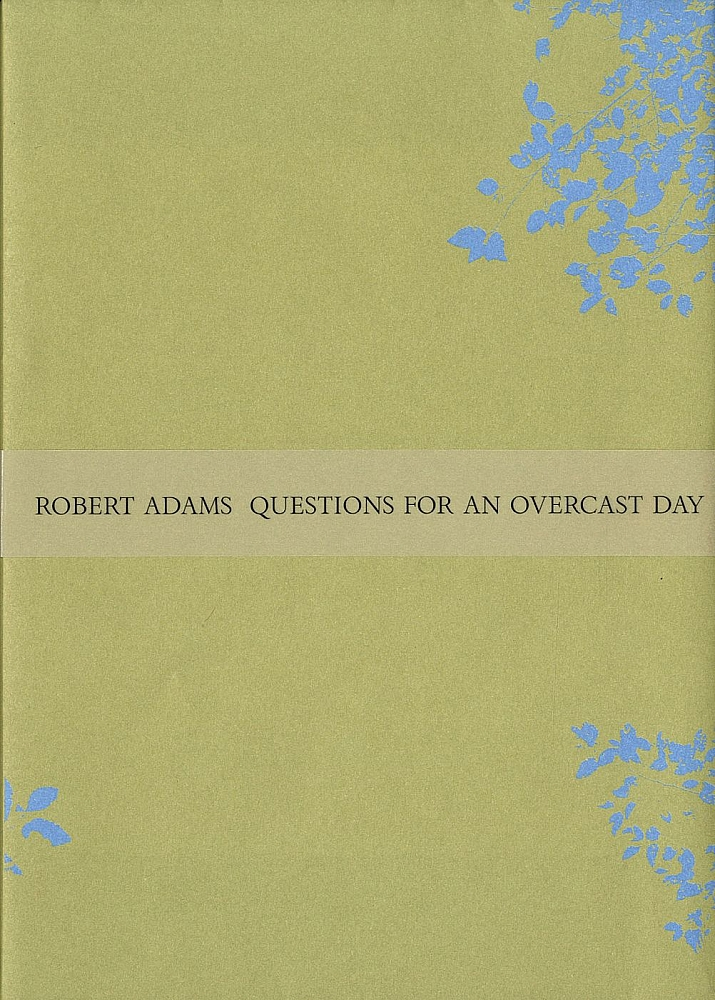 Robert Adams: Questions for an Overcast Day