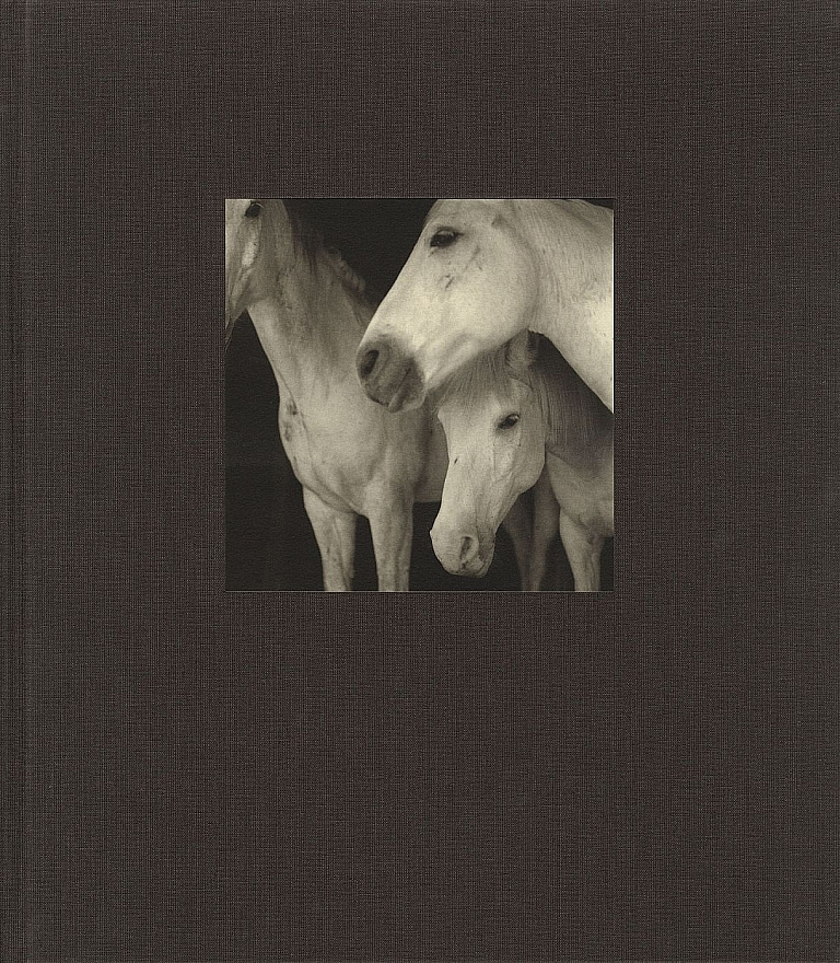 21st Editions Journal of Contemporary Photography Volume 1 (One/I) [SIGNED & INSCRIBED