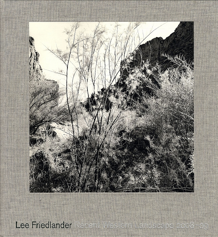 Lee Friedlander: Recent Western Landscape 2008-09 (Mary Boone Gallery), Limited Edition [SIGNED