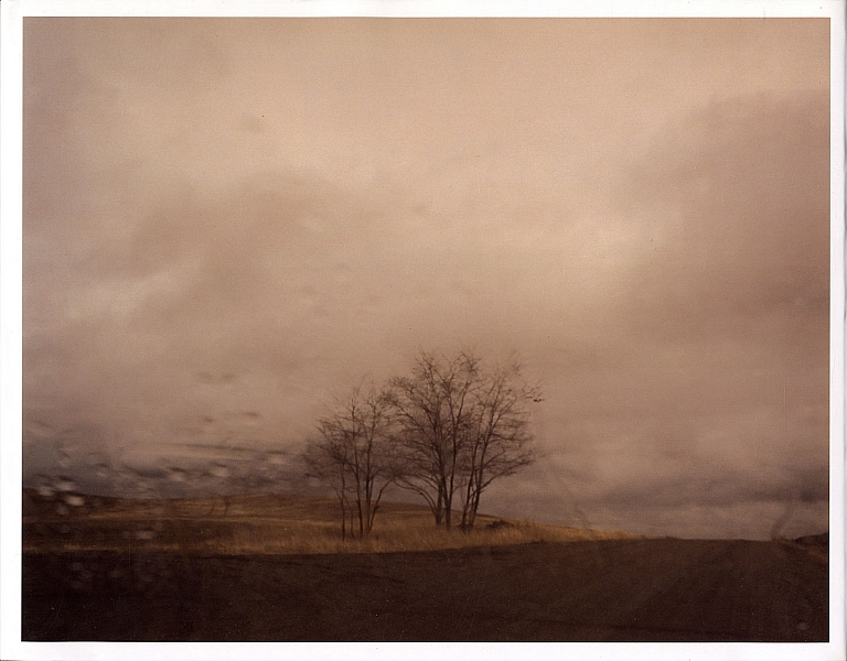 Todd Hido: Roaming [SIGNED in Year of Publication