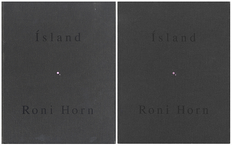 Roni Horn: Pooling Waters (Ísland: To Place 4: Two Volume Set