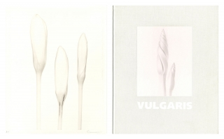 "Ron van Dongen: Vulgaris, Limited Edition (with Gelatin Silver Print, ""Crocus 'Jeanne D'Arc',..."