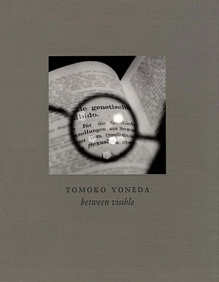 Tomoko Yoneda: Between Visible. Tomoko YONEDA, Kotaro, IIZAWA, Mark, HAWORTH-BOOTH