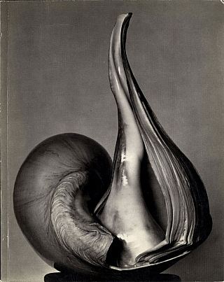 Untitled 41 (The Friends of Photography): EW 100: Centennial Essays in Honor of Edward Weston....