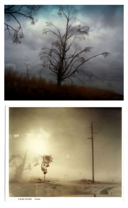 Todd Hido: A Road Divided, Limited Edition, #1/100 (with Type-C Print). Todd HIDO.