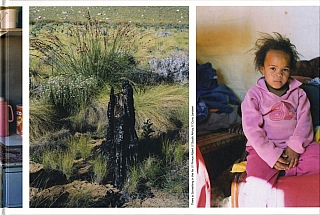 Cuny Janssen: There is Something in the Air in Prince Albert, South Africa. Cuny JANSSEN.