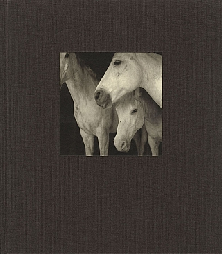 21st Editions Journal of Contemporary Photography Volume 1 (One/I) [SIGNED & INSCRIBED]. Bernard...